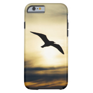 Bird in flight tough iPhone 6 case