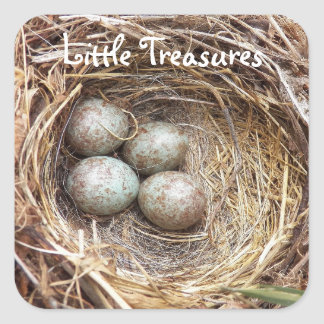 Bird Nest Eggs Photo Square Sticker