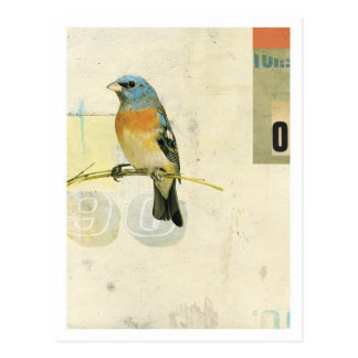 Bird No 1 Postcards