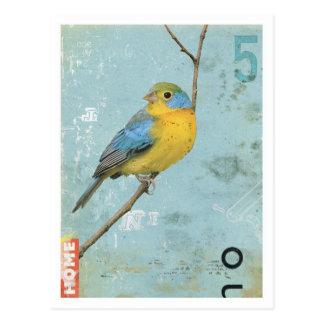 Bird No 5 Post Cards