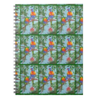 bird notebook rainbow lorikeet