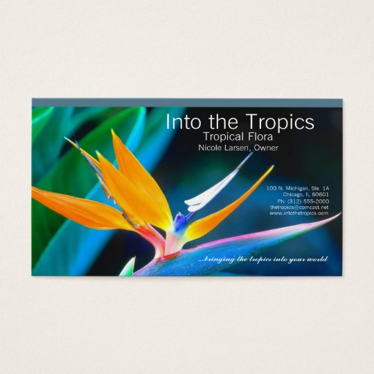 bird-of-paradise business card