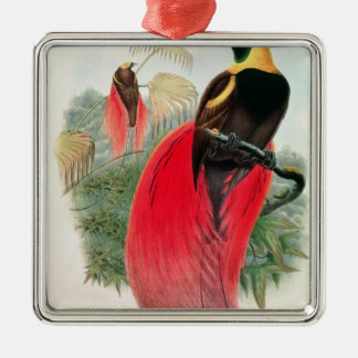Bird of Paradise, engraved by T. Walter Christmas Ornament