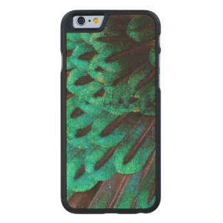 Bird of Paradise feather close-up Carved Maple iPhone 6 Case