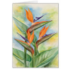 Bird Of Paradise Flower Art - Multi Card