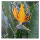 Bird of Paradise flower ceramic photo tile