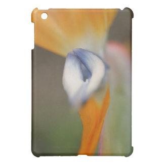 Bird Of Paradise Flower iPad Mini Cover
