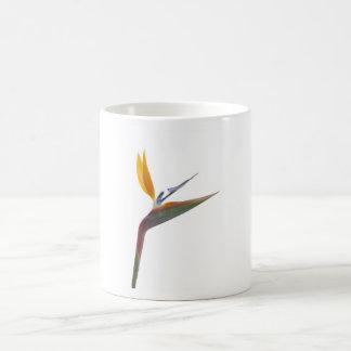 Bird of paradise flower (Strelitzia reginae) Basic White Mug