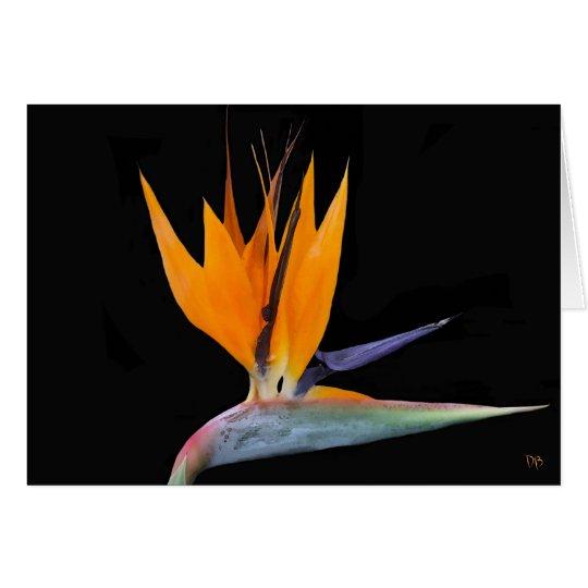 Bird Of Paradise Greeting Cards