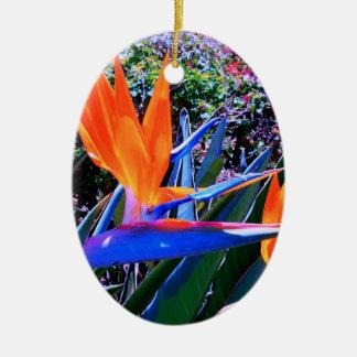 Bird of Paradise Hawaii Ceramic Oval Decoration