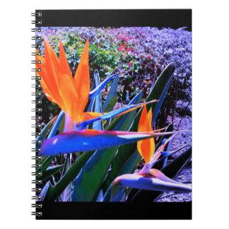 Bird of Paradise Hawaii Notebook