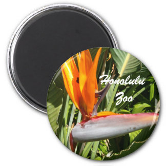 Bird of Paradise, Honolulu Zoo 6 Cm Round Magnet