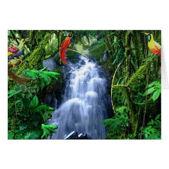 Bird of paradise in rain forest card