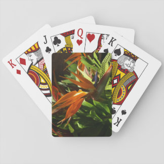 Bird of Paradise on Playing Card