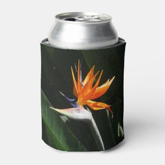 Bird of Paradise Orange Tropical Flower Can Cooler
