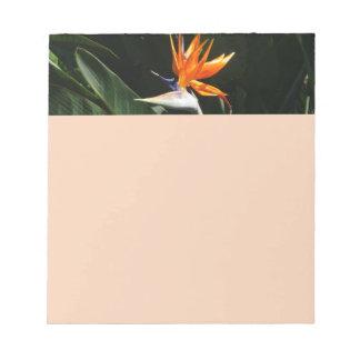 Bird of Paradise Orange Tropical Flower Notepad