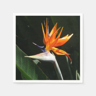 Bird of Paradise Orange Tropical Flower Paper Napkin