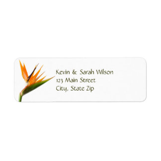 Bird of Paradise Return Address Labels