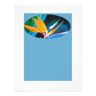 Bird of paradise stationery custom flyer