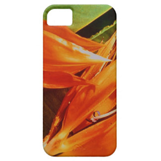 Bird of Paradise  the flower for 9th anniversary Barely There iPhone 5 Case