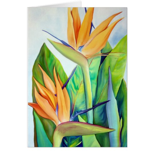 Bird of Paradise, Tropical flower, Card