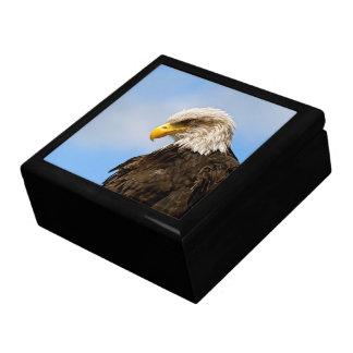 Bird of Pray Bald Eagle Trinket Box