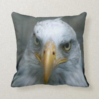 Bird of Prey #21-Bald Eagle Cushion