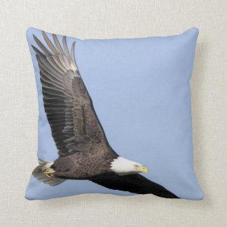 Bird of Prey #22- bald eagle Cushion