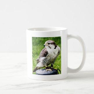 Bird of Prey #2- Peregrine Falcon Coffee Mug