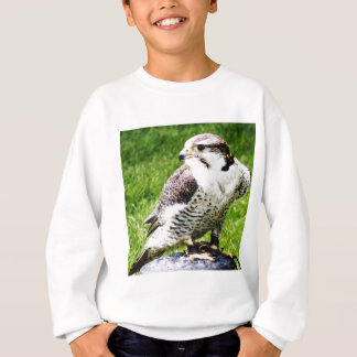 Bird of Prey #2-Peregrine falcon Sweatshirt