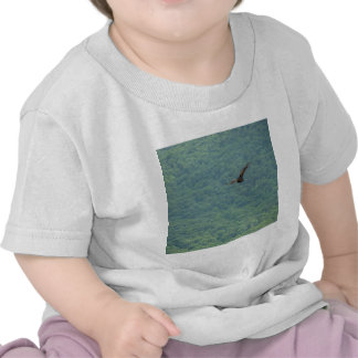 bird of prey #3 shirt