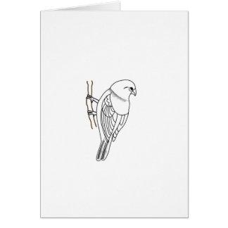 bird on a twig greeting card