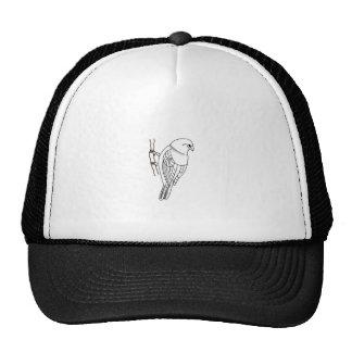 bird on a twig mesh hat