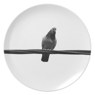 bird on a wire plate