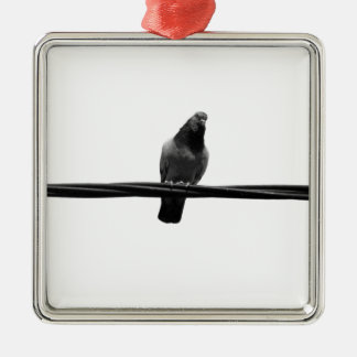 bird on a wire Silver-Colored square decoration