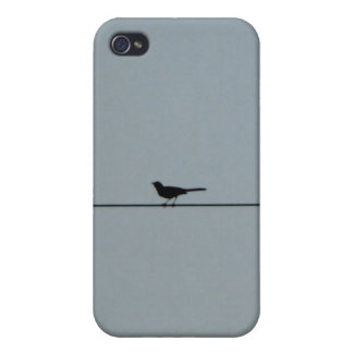 Bird On A Wire Speck Case iPhone 4/4S Covers