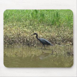 Bird on Avery Island Louisiana Mouse Pad