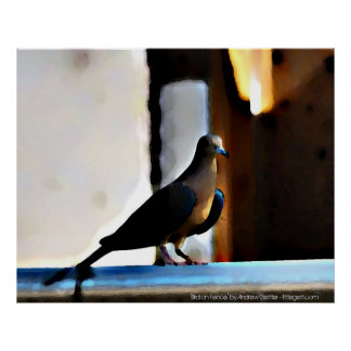 Bird on Fence by Andrew Gettler Posters