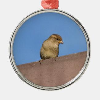 bird on roof christmas ornament