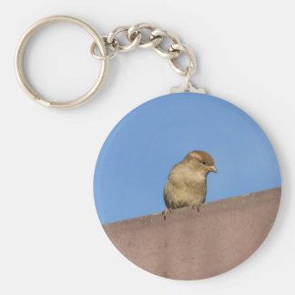 bird on roof key ring