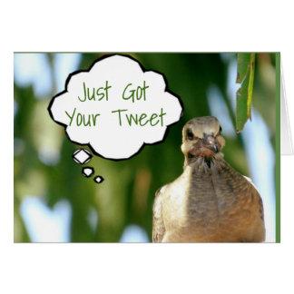 BIRD ON ***TWITTER*** GOT TWEET ABOUT YOUR *TRIP* CARD
