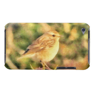 Bird painting iPod touch cases