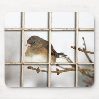 Bird Perched on Branch - Mousepad