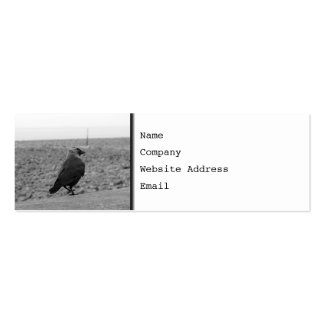 Bird Picture. Jackdaw. Business Card Template