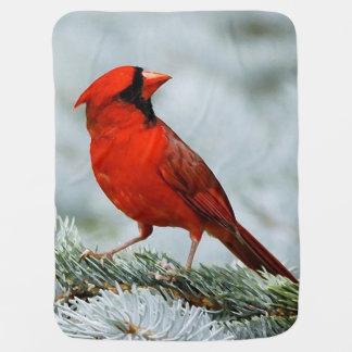 Bird red_blanket baby blanket