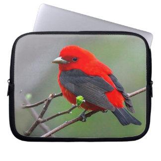 Bird red_iphone laptop computer sleeve