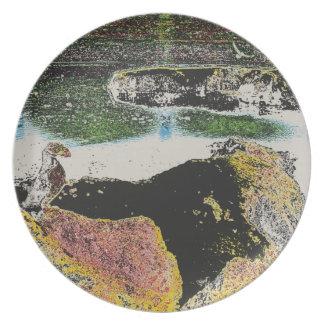 bird rocks plate