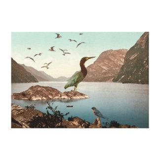 Bird Sanctuary Canvas Print
