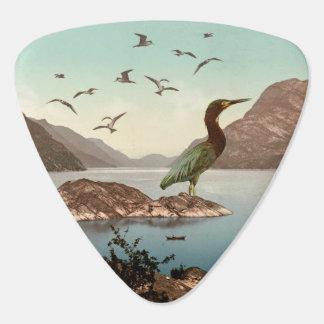 Bird Sanctuary Plectrum