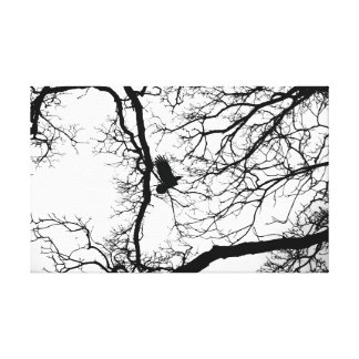 Bird Silhouette Gallery Wrapped Canvas